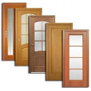 Двери, дверные блоки Износков
